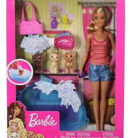 Barbie Barbie Doll & Accessories