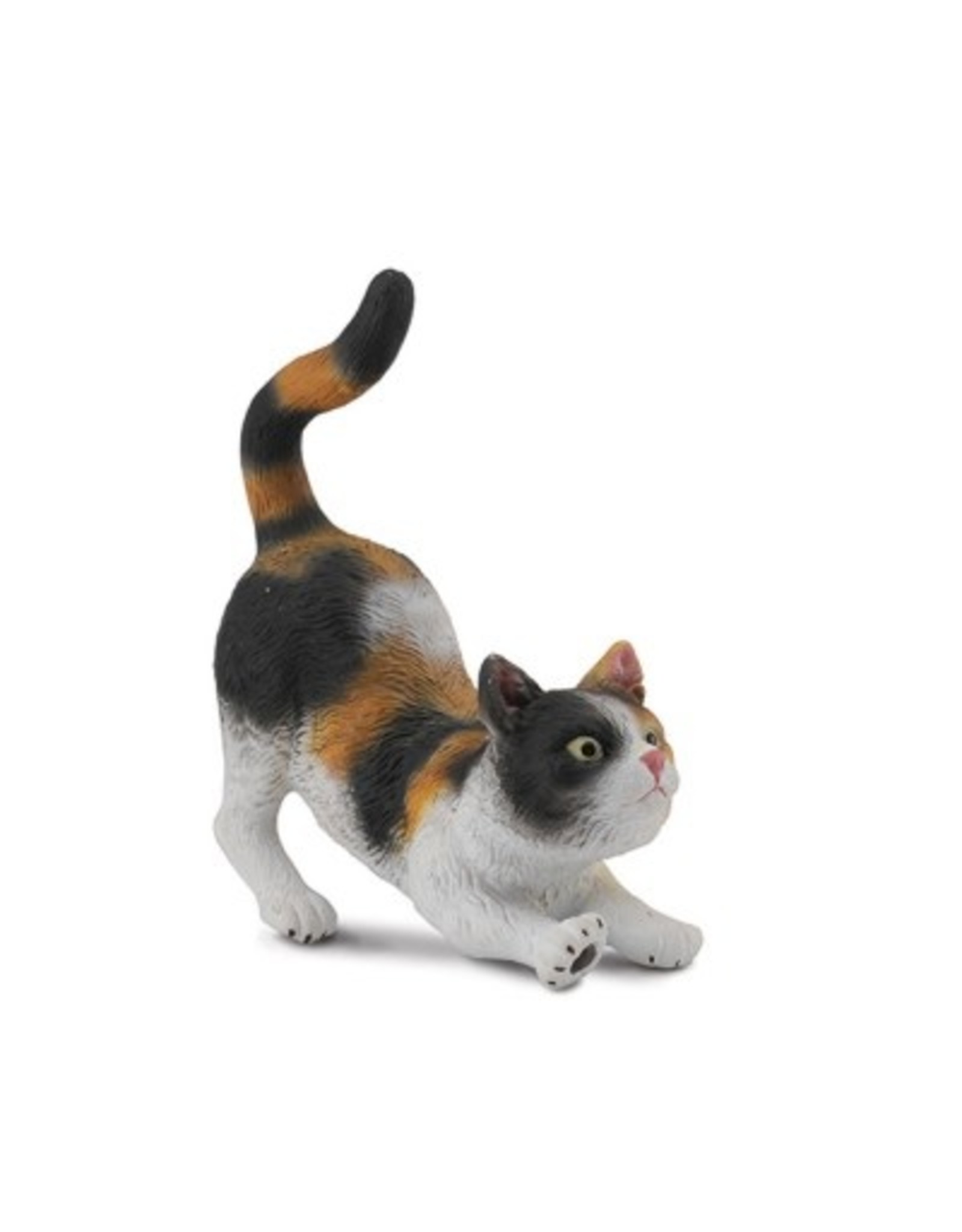CollectA House Cat