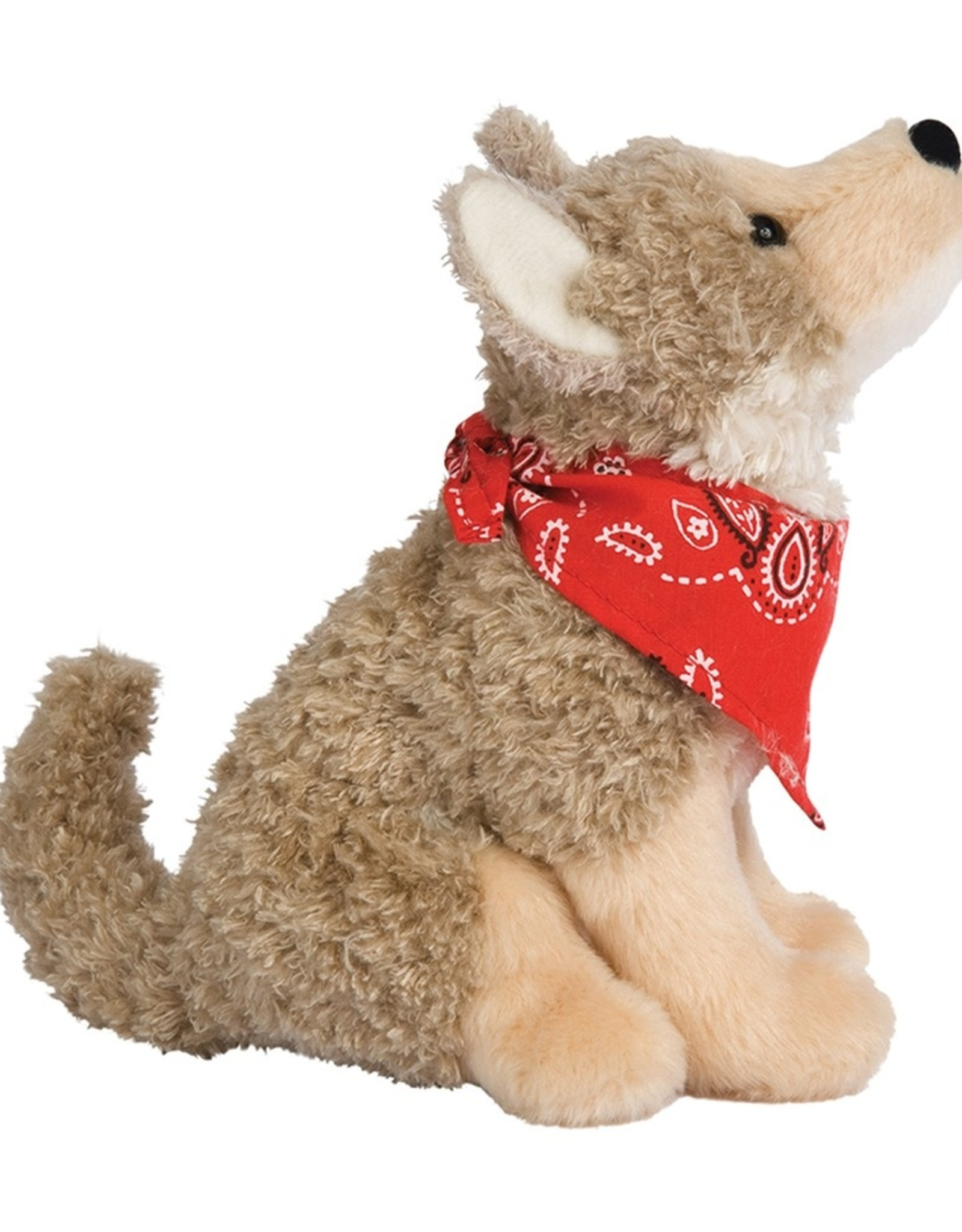 Douglas Trickster Coyote