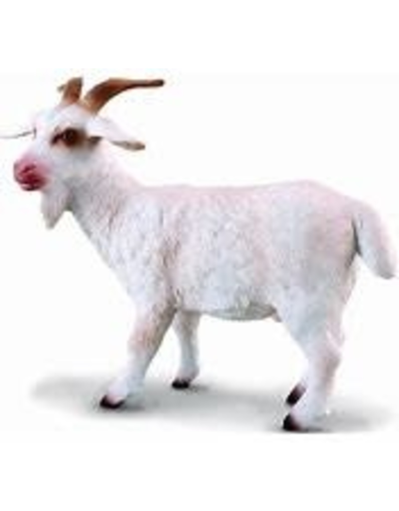 CollectA Billy Goat