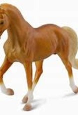Golden Palomino Tennessee Walking Horse Stallion