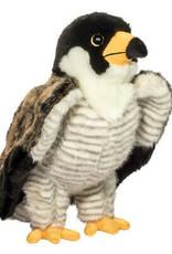 Douglas Houston Falcon*