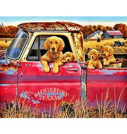 Paint Works Golden Retrievers in Pickup