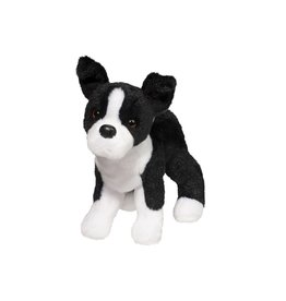 Douglas Quinn Boston Terrier