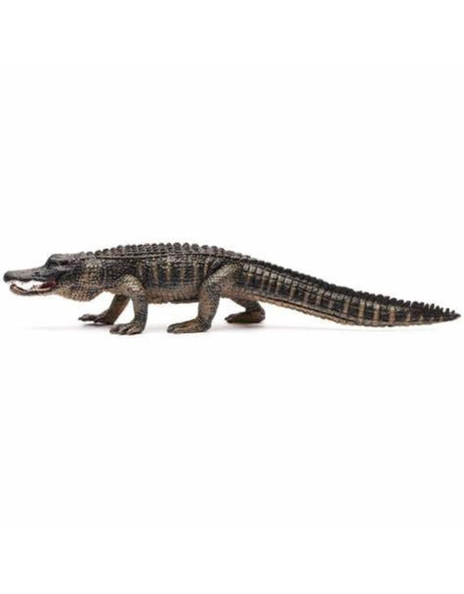 CollectA American Alligator