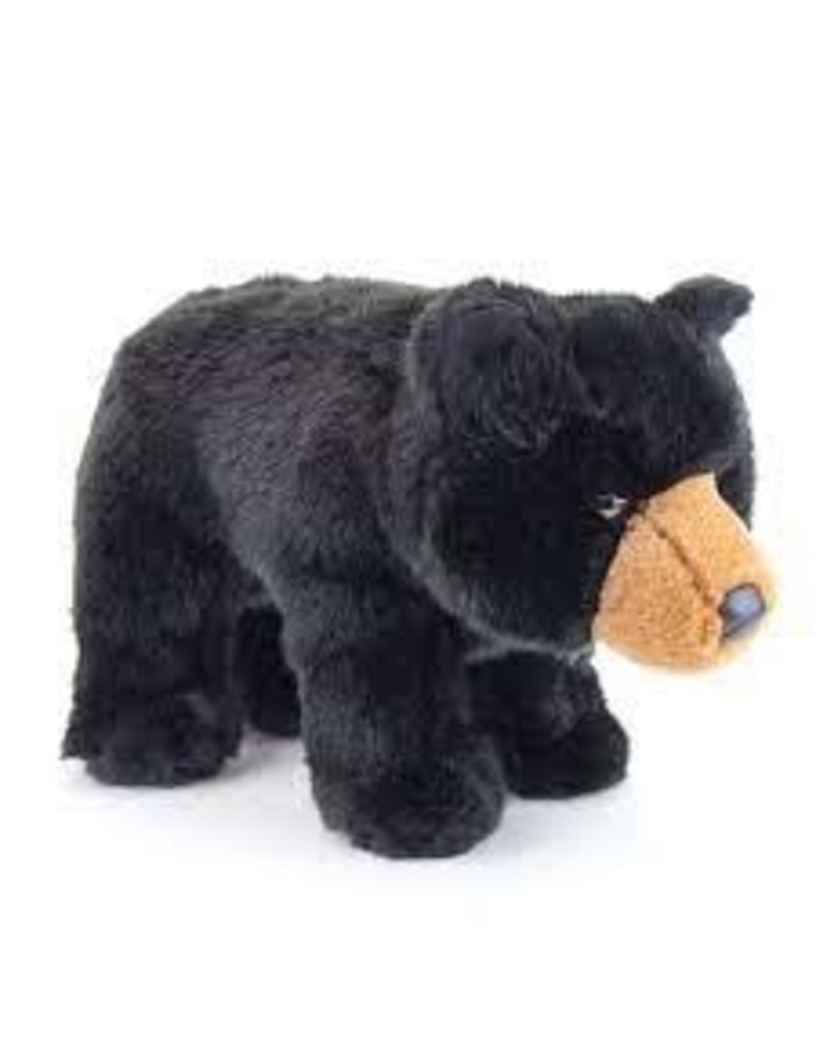 Douglas Almond Black Bear