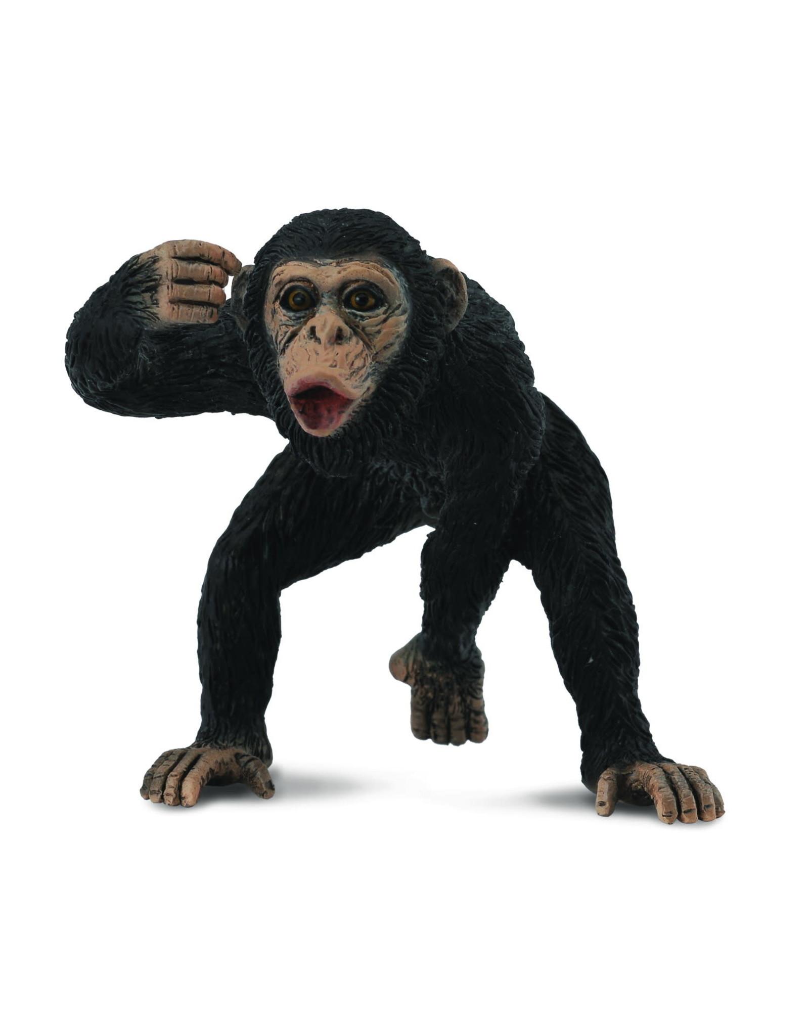 CollectA Chimpanzee Male