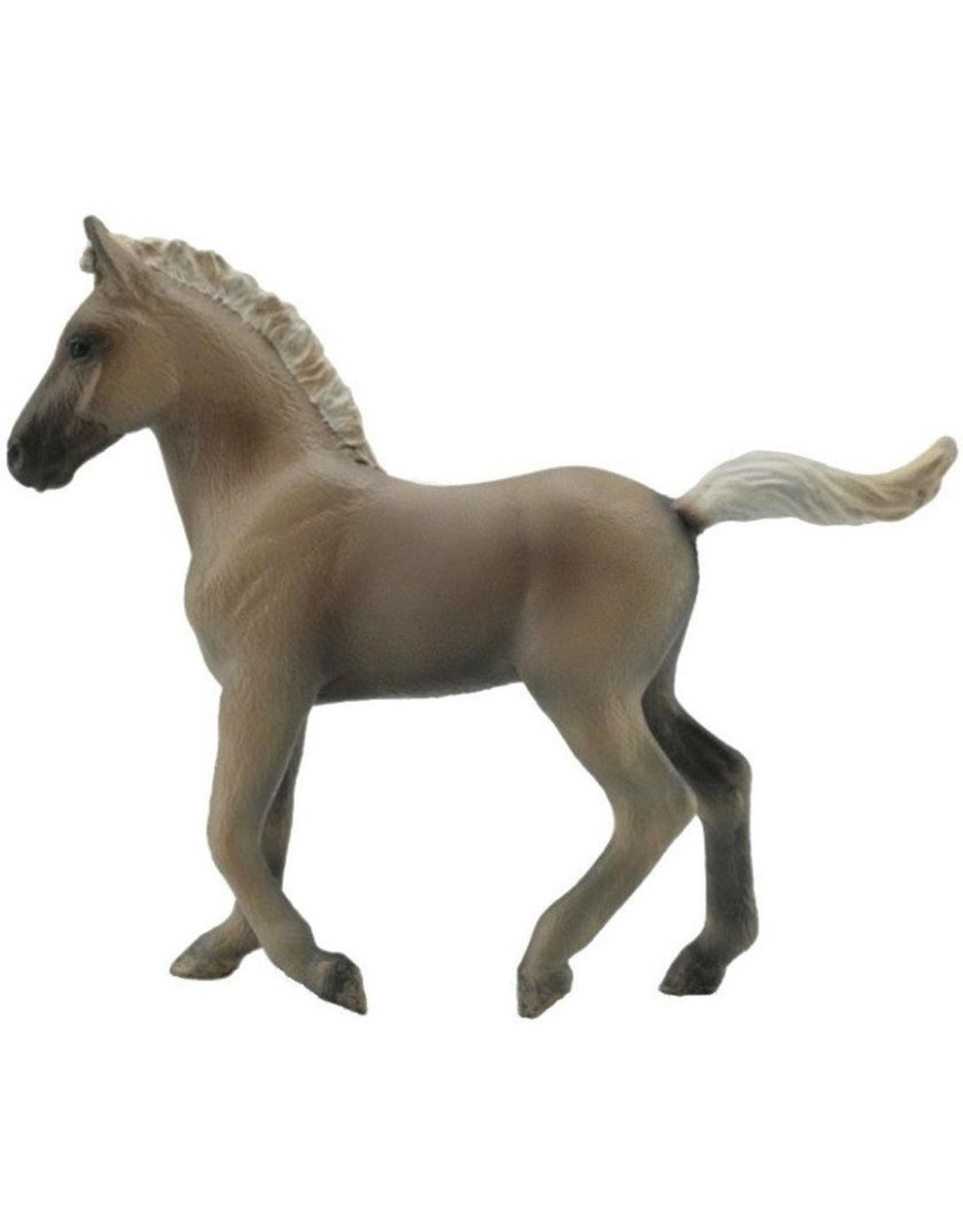CollectA Chocolate Rocky Mountain Foal
