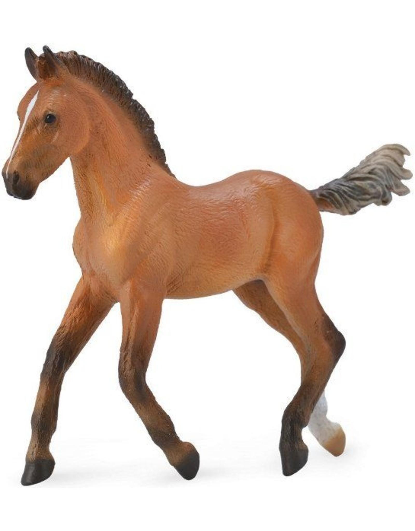 CollectA Bay Hanoverian Foal