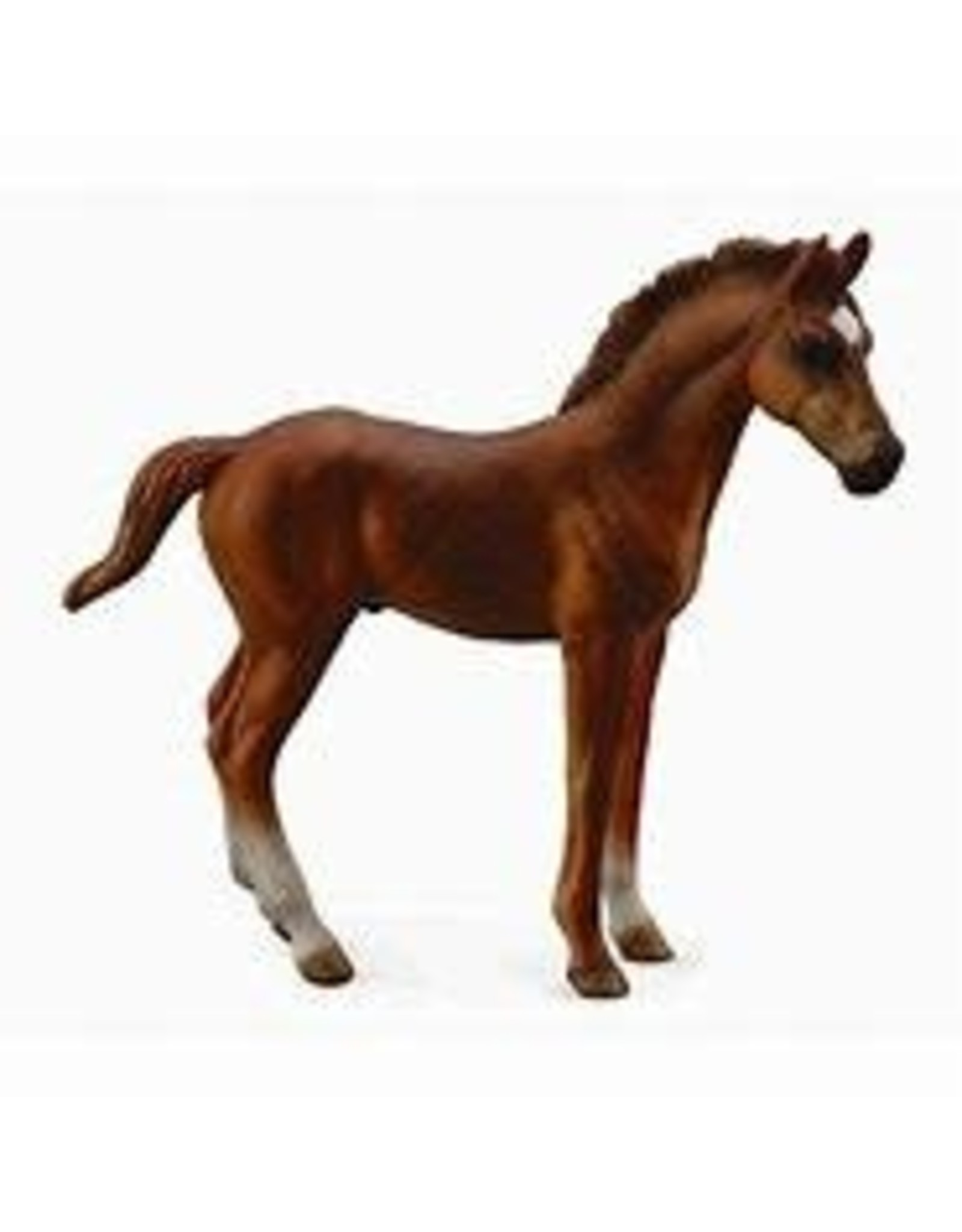 CollectA Chestnut Thoroughbred Foal - Standing