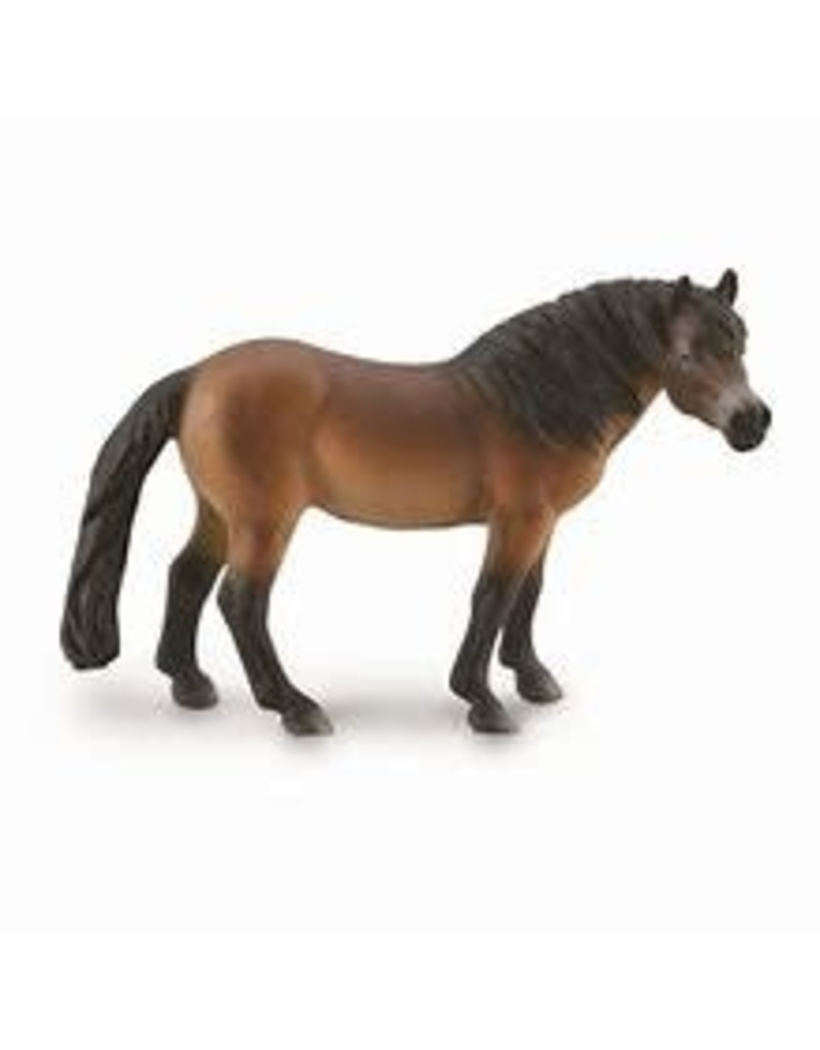 CollectA Exmoor Pony Stallion