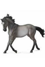 Grulla Mustang Mare