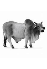 CollectA Brahman Bull