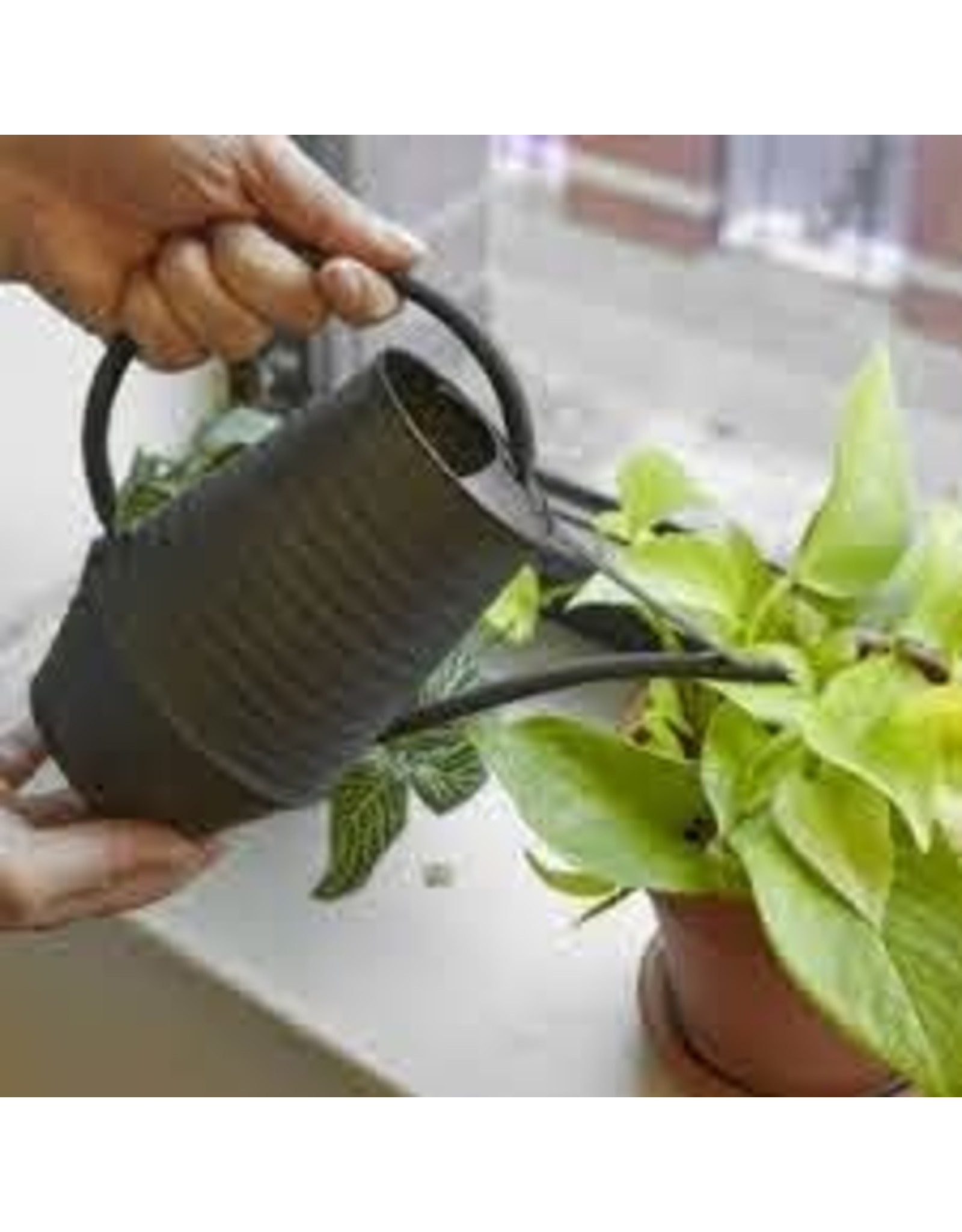 Industrial Watering Can