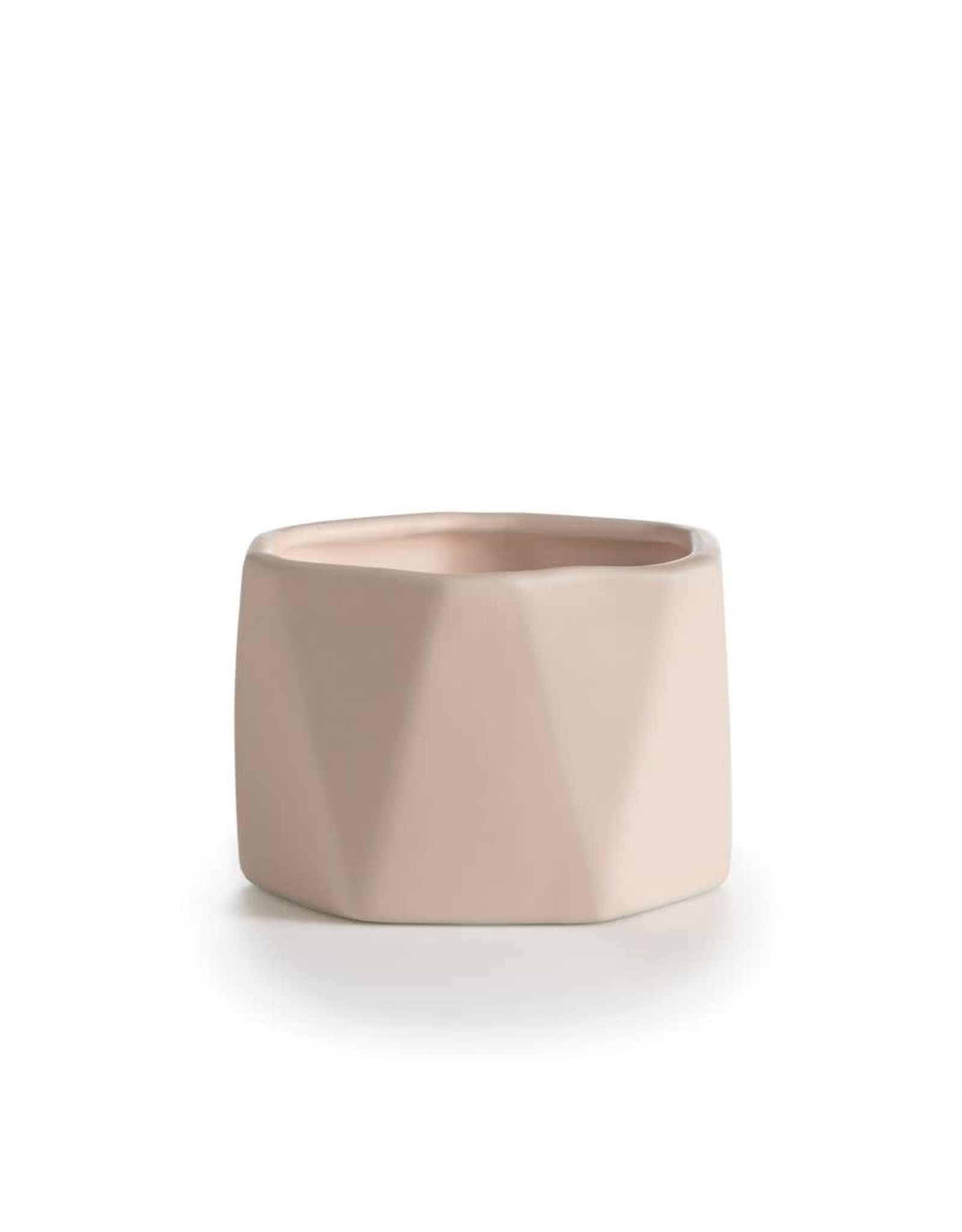 Coconut Milk Mango Candle - Dylan Ceramic