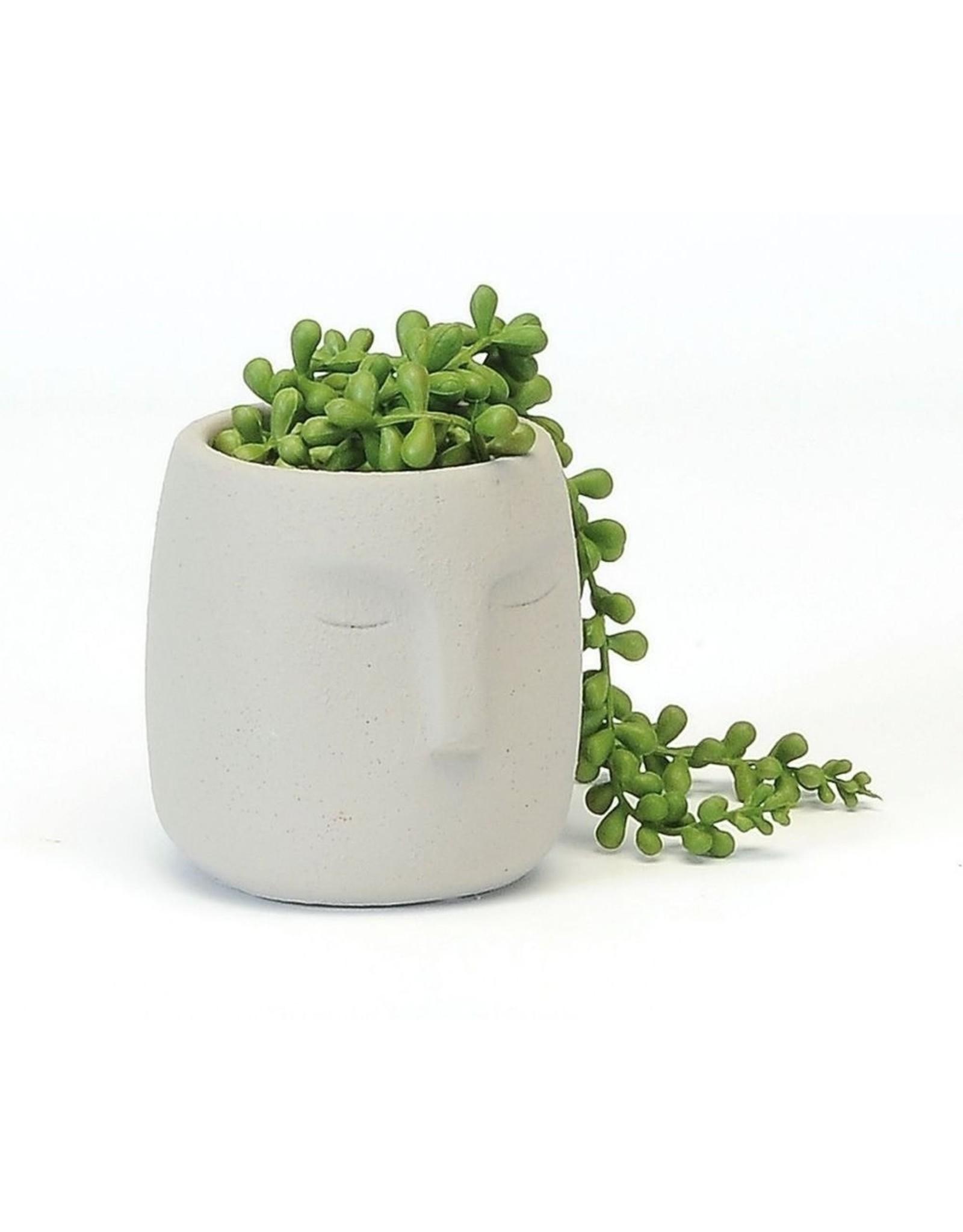 Face Planter - Small