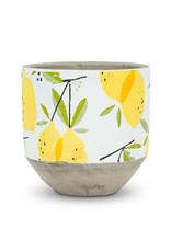 "Lemon Planter - Medium 5.5"""