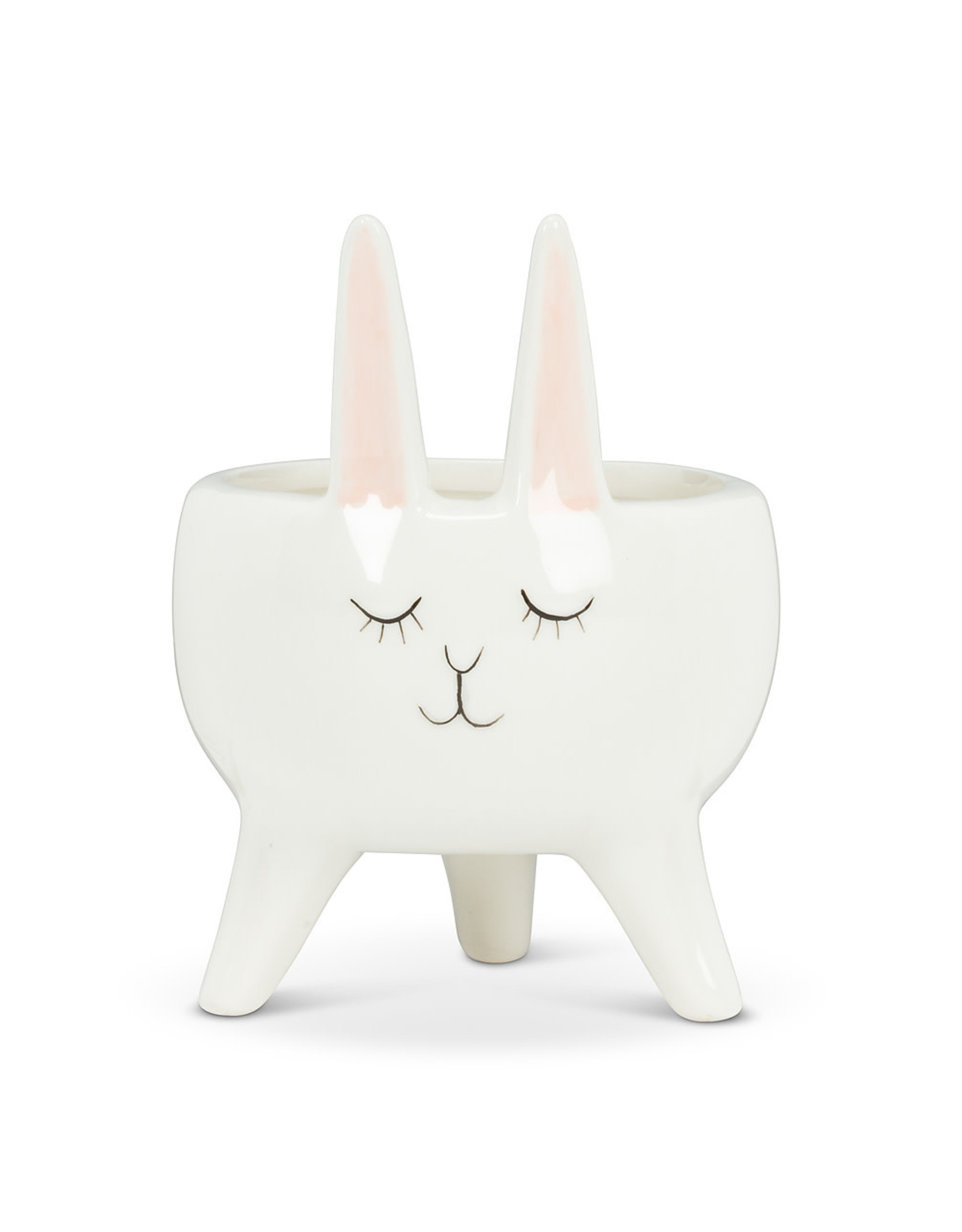 Bunny Planter with Ears