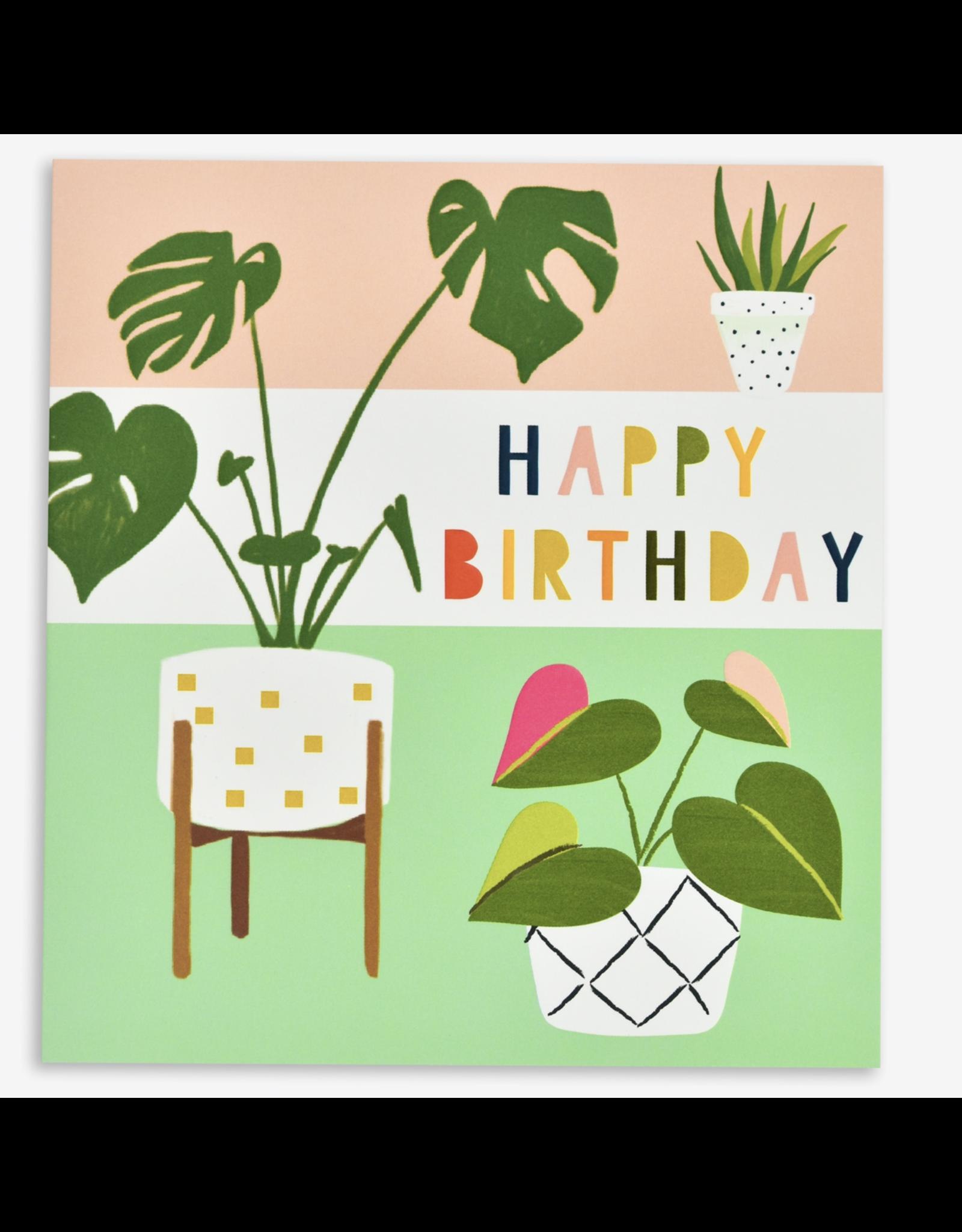 Birthday - Happy Birthday - Plants