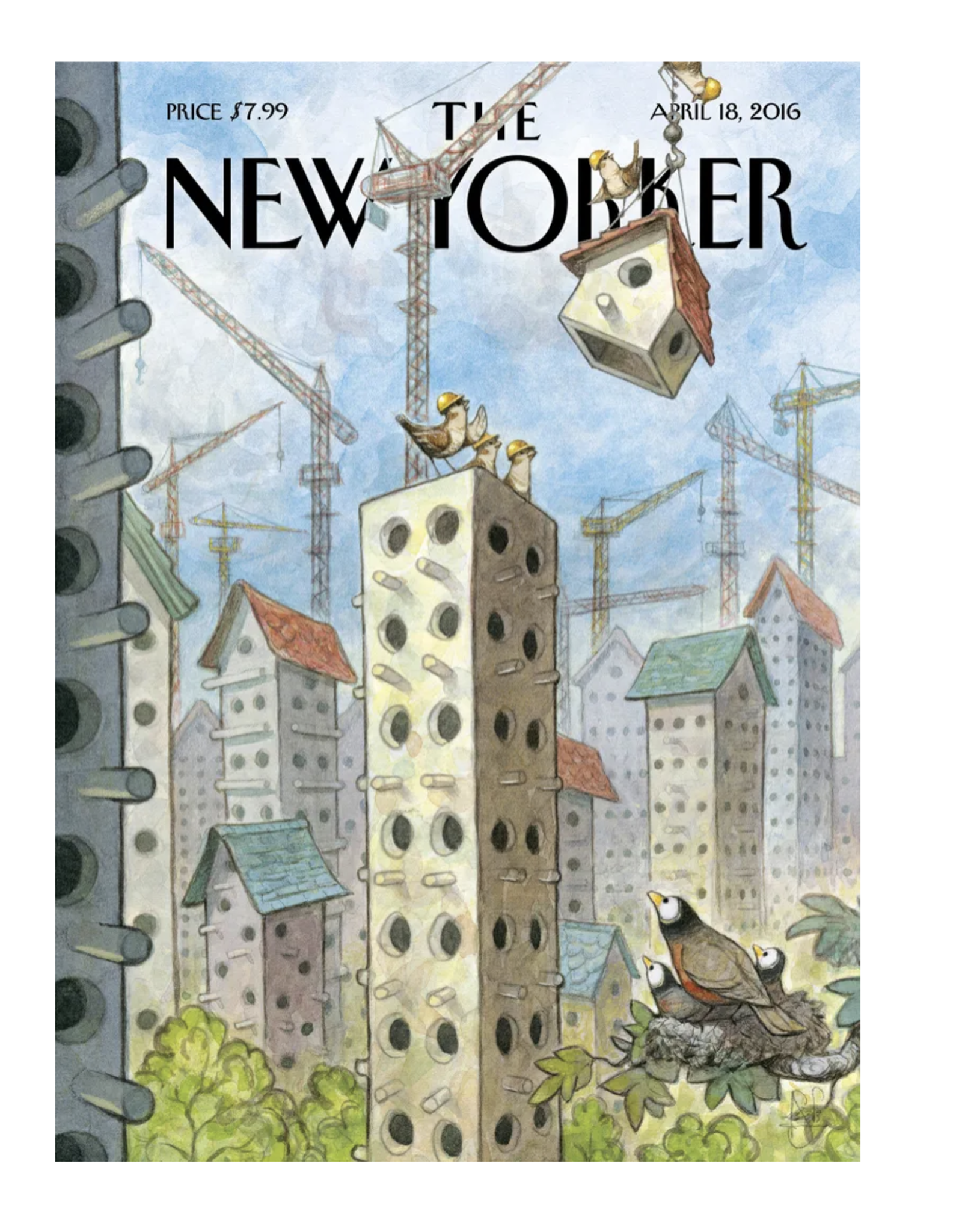 New Home - The New Yorker