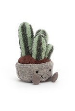 Silly Succulent Columnar Cactus