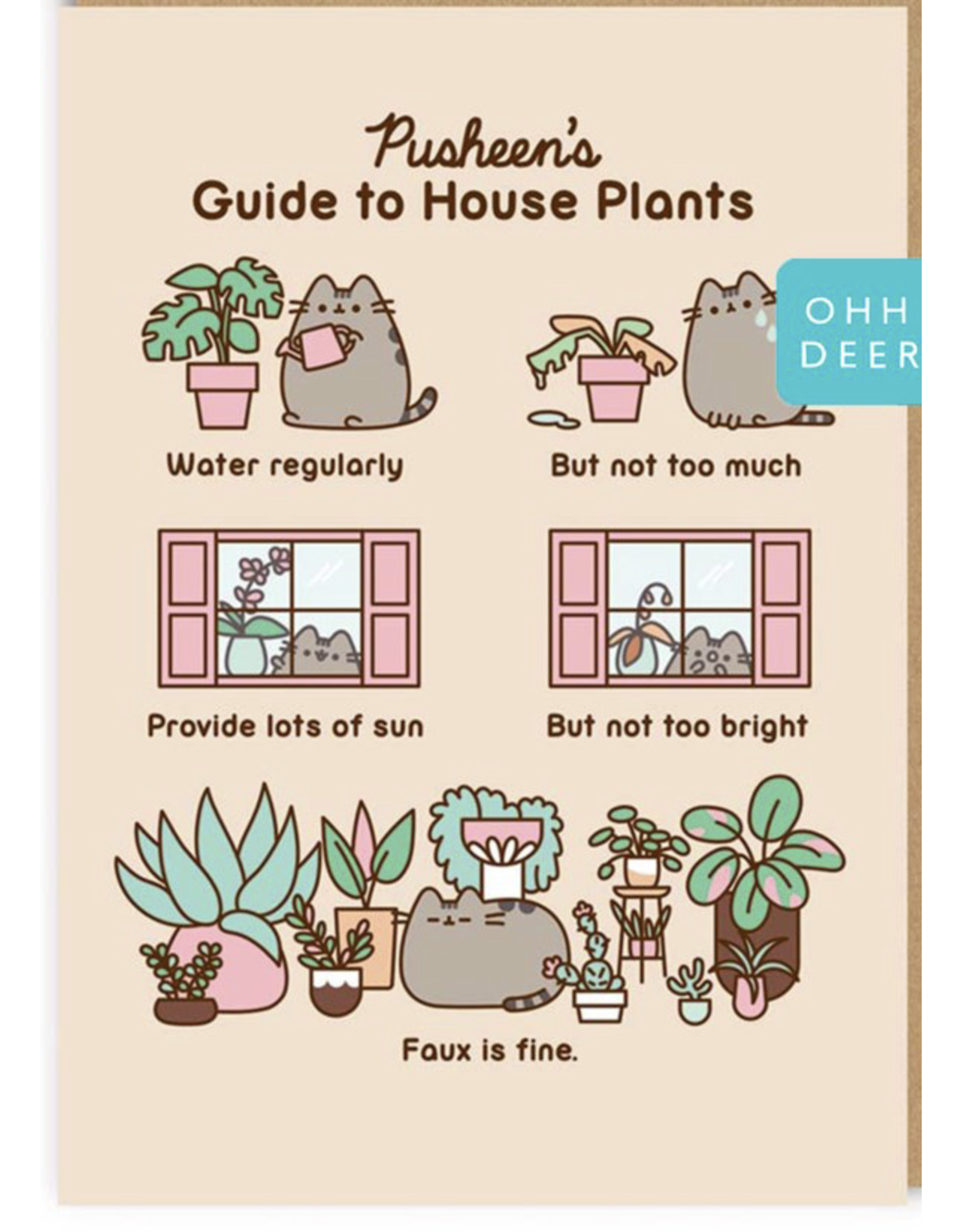 Just Because - Guide To House Plants