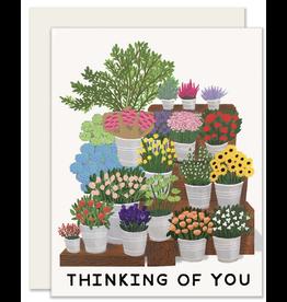 Sympathy - Thinking of You