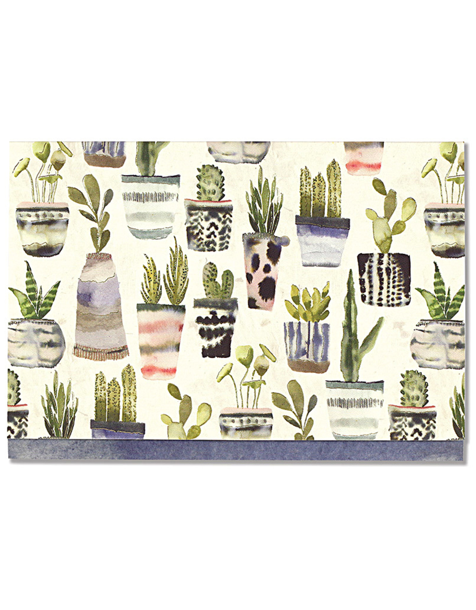 Boxed Notes - Watercolour Succulents
