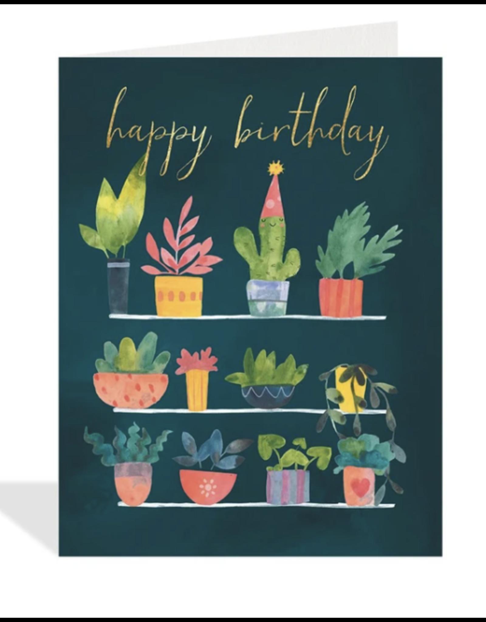 Birthday - Cactus Celebration
