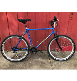 Diamondback Ascent - 21""