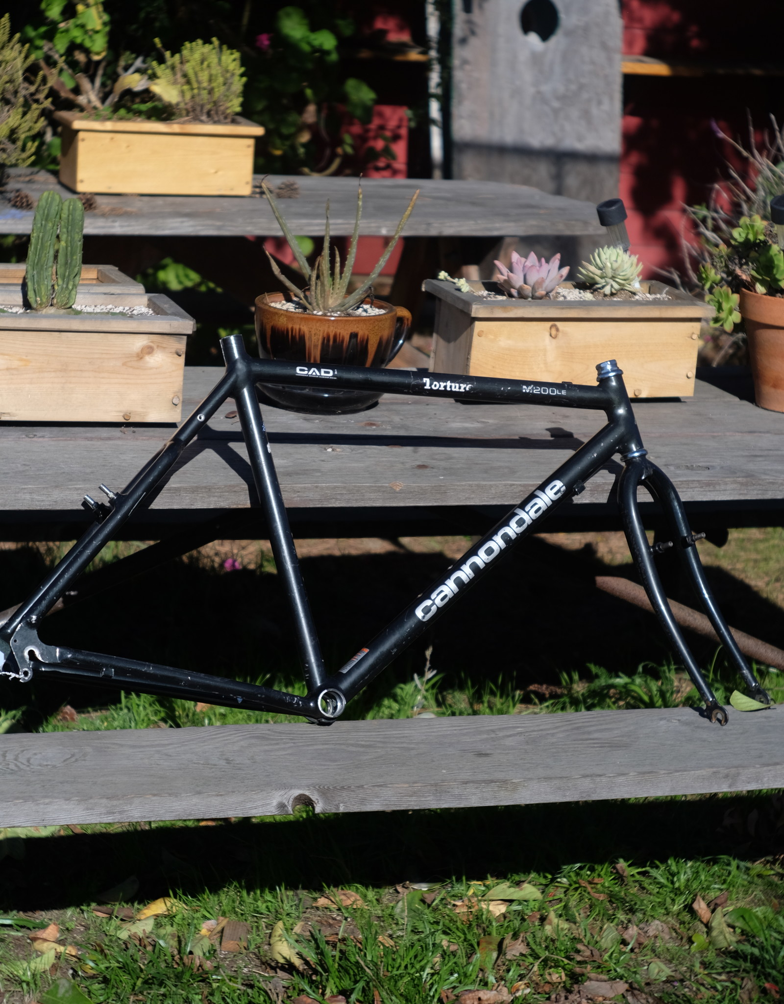 Cannondale M200LE Mountain Frame - 19in