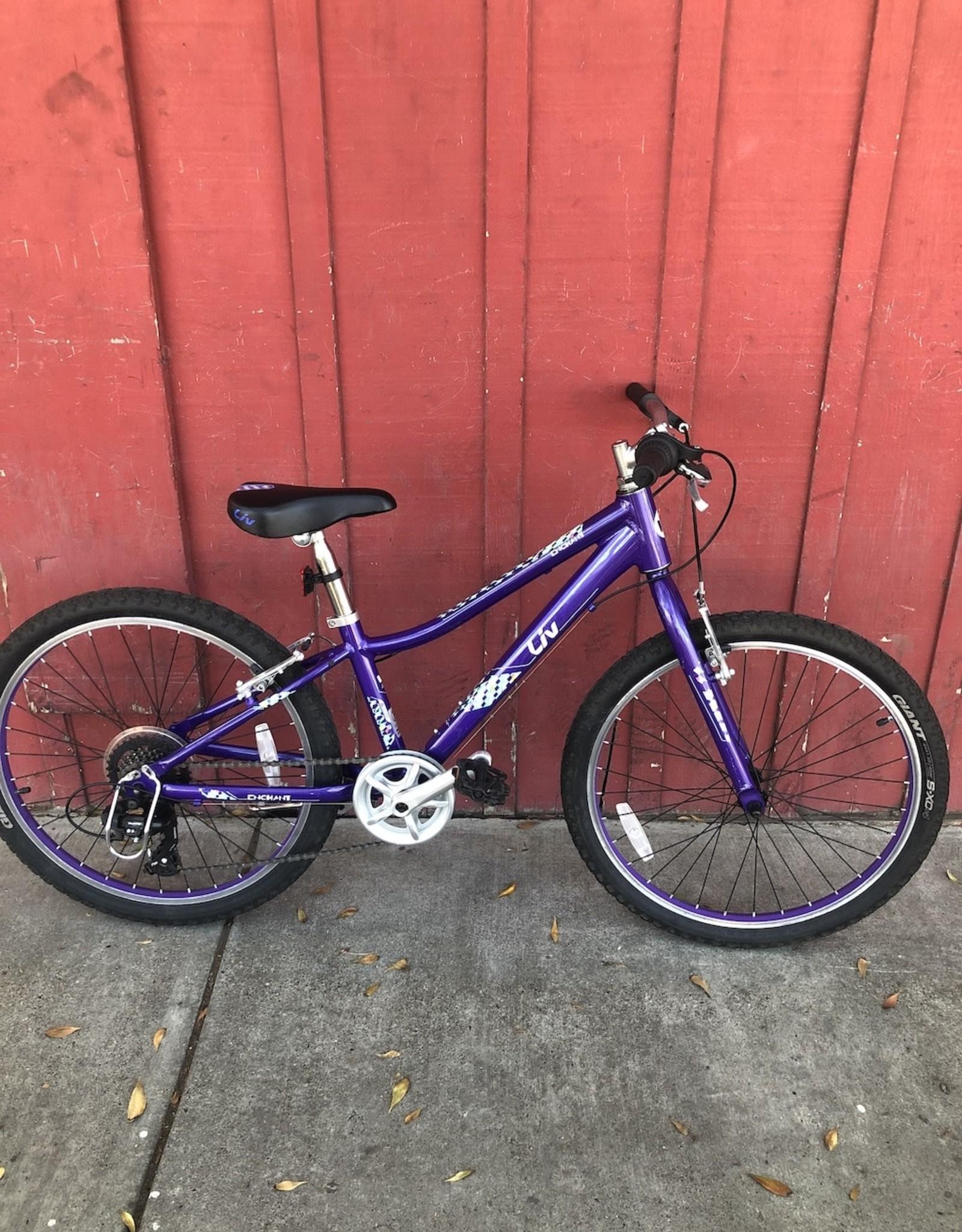 "Liv Enchant - 24"" wheels (purple)"