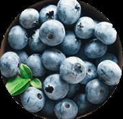 Viandex Bleuets sauvages congelés (1kg)