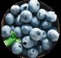 Bleuets sauvages congelés (1kg)