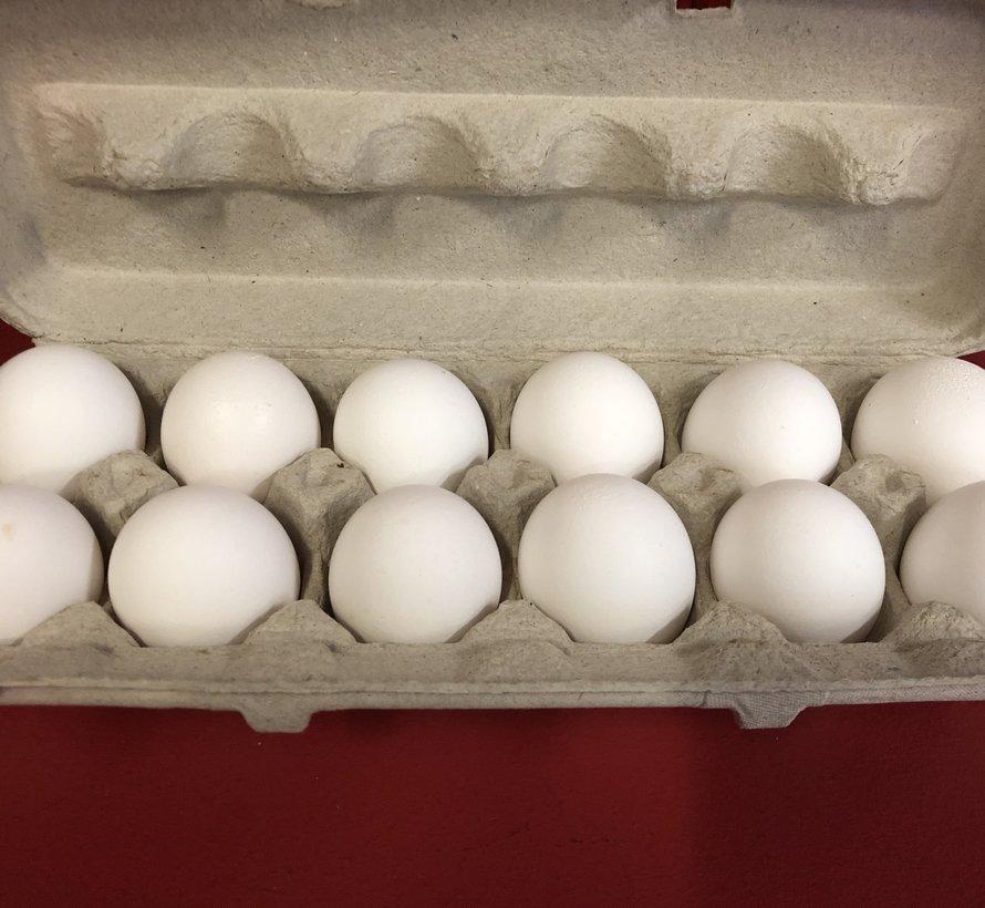 12 oeufs blancs frais
