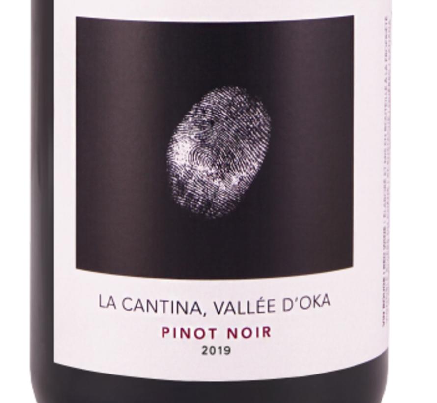 Vin rouge LA CANTINA PINOT NOIR (2.5G/l)