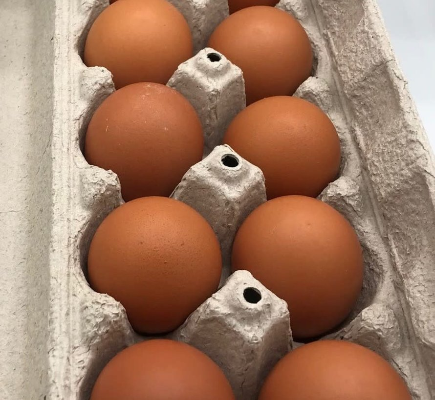 12 oeufs bruns frais de poules en libertés