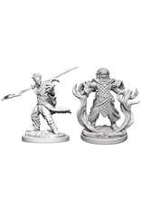 WizKids Dungeons & Dragons Nolzur`s Marvelous Unpainted Miniatures: W3 Human Male Druid