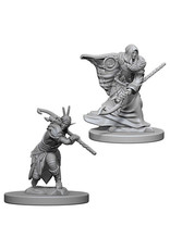 WizKids Dungeons & Dragons Nolzur`s Marvelous Unpainted Miniatures: W4 Elf Male Druid