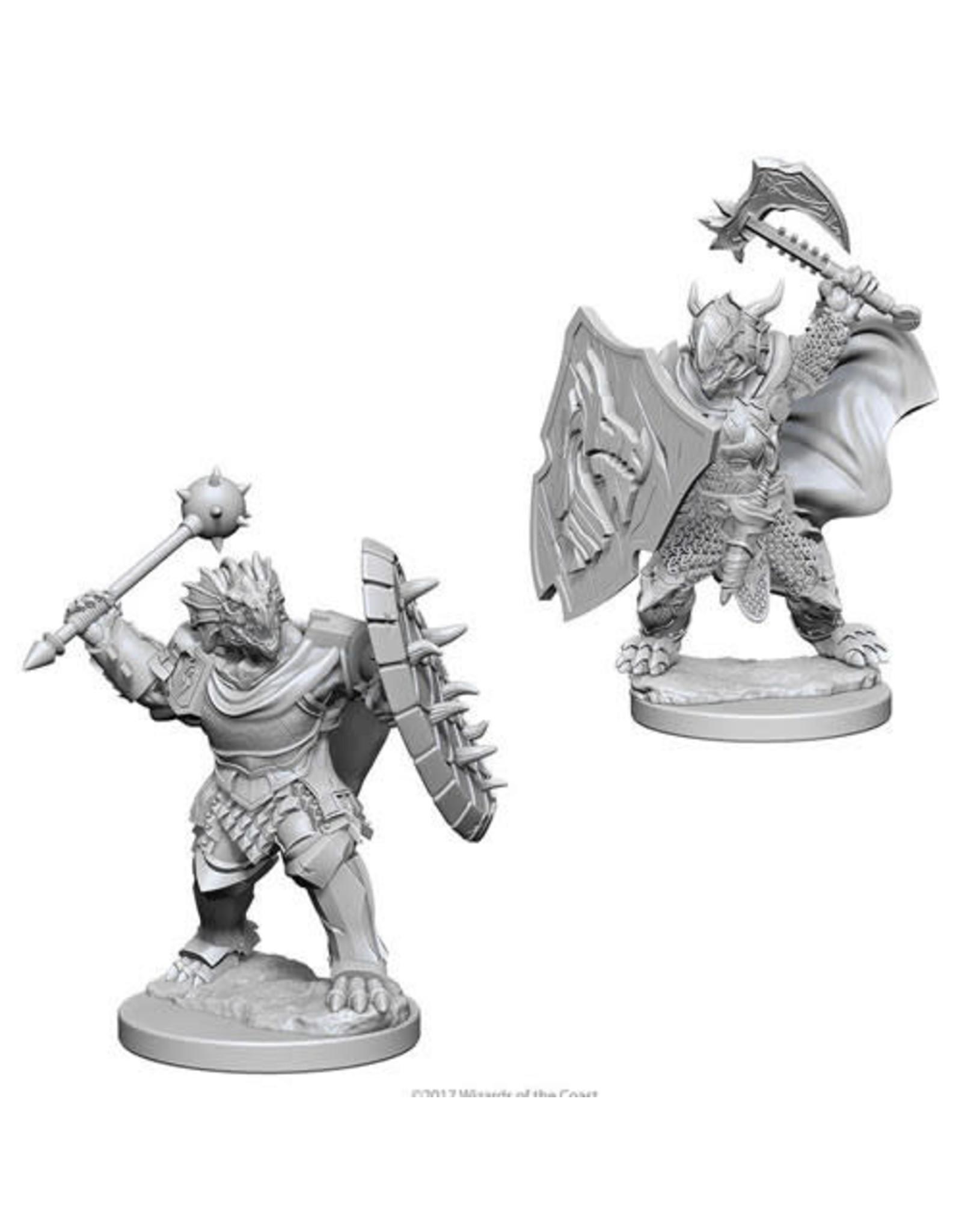 WizKids Dungeons & Dragons Nolzur`s Marvelous Unpainted Miniatures: W4 Dragonborn Male Paladin