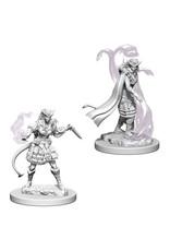 WizKids Dungeons & Dragons Nolzur`s Marvelous Unpainted Miniatures: W4 Tiefling Female Sorcerer