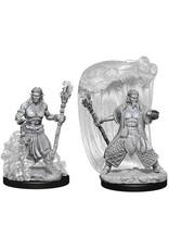 WizKids Dungeons & Dragons Nolzur`s Marvelous Unpainted Miniatures: W5 Water Genasi Male Druid