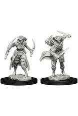 WizKids Dungeons & Dragons Nolzur`s Marvelous Unpainted Miniatures: W7 Tiefling Female Rogue