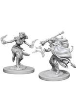 WizKids Dungeons & Dragons Nolzur`s Marvelous Unpainted Miniatures: W6 Female Tiefling Warlock
