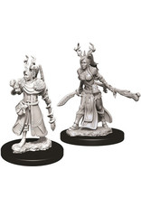 WizKids Dungeons & Dragons Nolzur`s Marvelous Unpainted Miniatures: W9 Female Human Druid