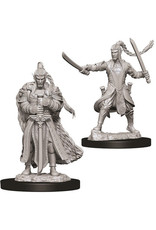 WizKids Dungeons & Dragons Nolzur`s Marvelous Unpainted Miniatures: W9 Male Elf Paladin
