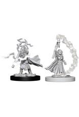 WizKids Pathfinder Deep Cuts Unpainted Miniatures: W5 Gnome Female Sorcerer
