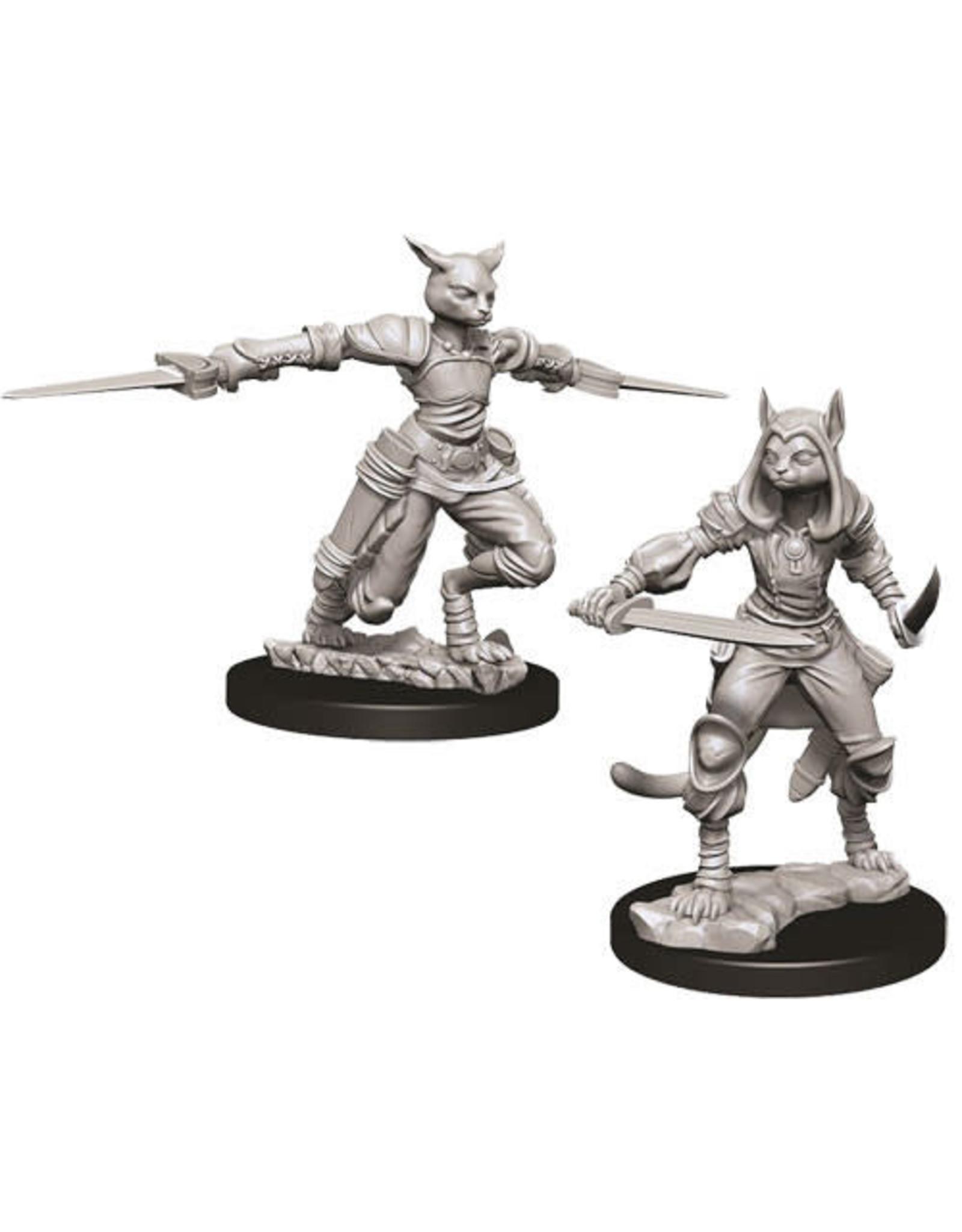 WizKids Dungeons & Dragons Nolzur`s Marvelous Unpainted Miniatures: W9 Female Tabaxi Rogue