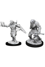 WizKids Dungeons & Dragons Nolzur`s Marvelous Unpainted Miniatures: W11 Male Dragonborn Paladin