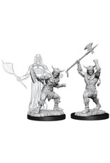 WizKids Dungeons & Dragons Nolzur`s Marvelous Unpainted Miniatures: W11 Male Human Barbarian
